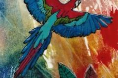 AB-McCaw-Bird-